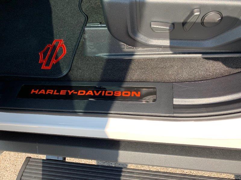 FORD F150 Harley davidson v8 5.0l m19